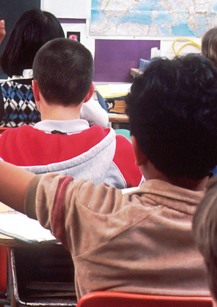 courses-school-groups-background